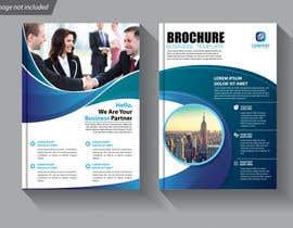 Nro 14 kilpailuun Build Brochure and Presentation käyttäjältä WahajRocky