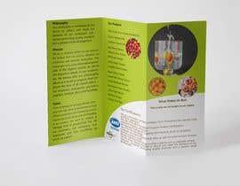 sifteara tarafından Design a brochure için no 33