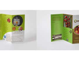 sifteara tarafından Design a brochure için no 34