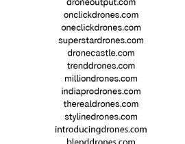 #41 untuk Drone Store Name for Shopify Store ($500 Bonus Prize) oleh arigo60