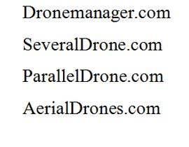 #22 untuk Drone Store Name for Shopify Store ($500 Bonus Prize) oleh naznul