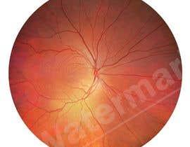 #9 для Iris Eye Design от amirhossainmeraj