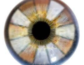 #19 для Iris Eye Design от fikierwansyah