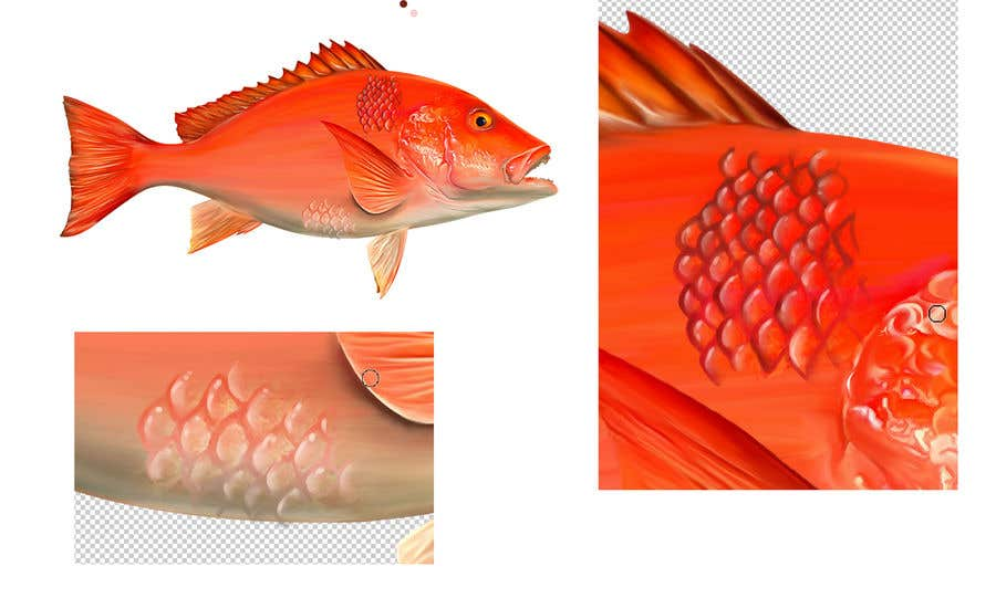 Konkurrenceindlæg #20 for I'm looking for a digital artist who can draw detailed fish scales