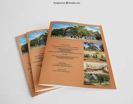 #41 untuk Two Logo Designs and a Flyer For an RV Park oleh poddosanta1