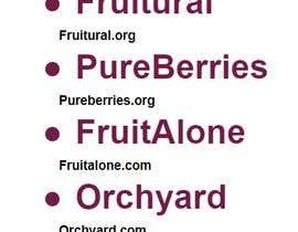 #232 untuk Need a brand name for 100% Organic Juice oleh surescribbler