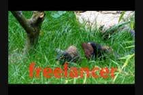 7 second Video -  Add FX ------ Blender ------ Turn MONKEYS into ALIENS ----- Film ------Cinema için Video Services1 No.lu Yarışma Girdisi