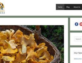 #67 para Logo and Banner Design for Mushroom Blog de ARjakir