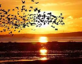 #125 for Sunset photography - 12/02/2020 01:14 EST by shuvankardhali45
