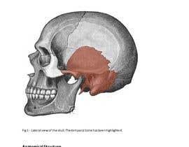 nº 7 pour Bone_Skull -- 4 par ethicalguru1