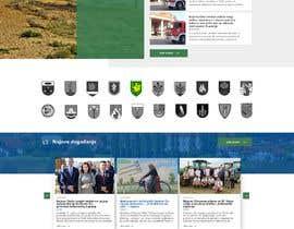 #65 untuk Home page redesign project oleh Hamzu1