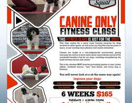 #209 untuk Flyer for my Canine Fitness Training Class oleh dreamworld092016