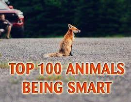 Nro 118 kilpailuun Create a Youtube thumbnail photo ----- for a youtube video (Top 100 Animals being smart) käyttäjältä sobhab