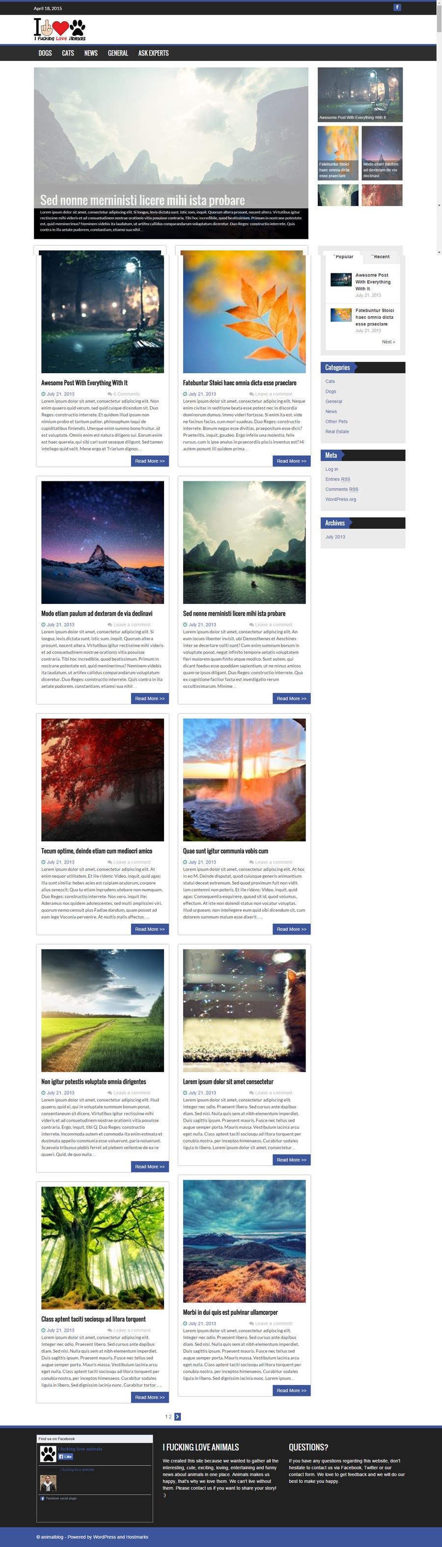Konkurrenceindlæg #                                        13                                      for                                         Design a layout for my website