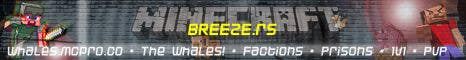 Penyertaan Peraduan #5 untuk Design a Banner for Minecraft
