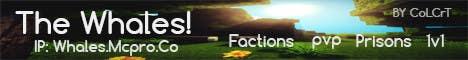 Konkurrenceindlæg #                                        12                                      for                                         Design a Banner for Minecraft