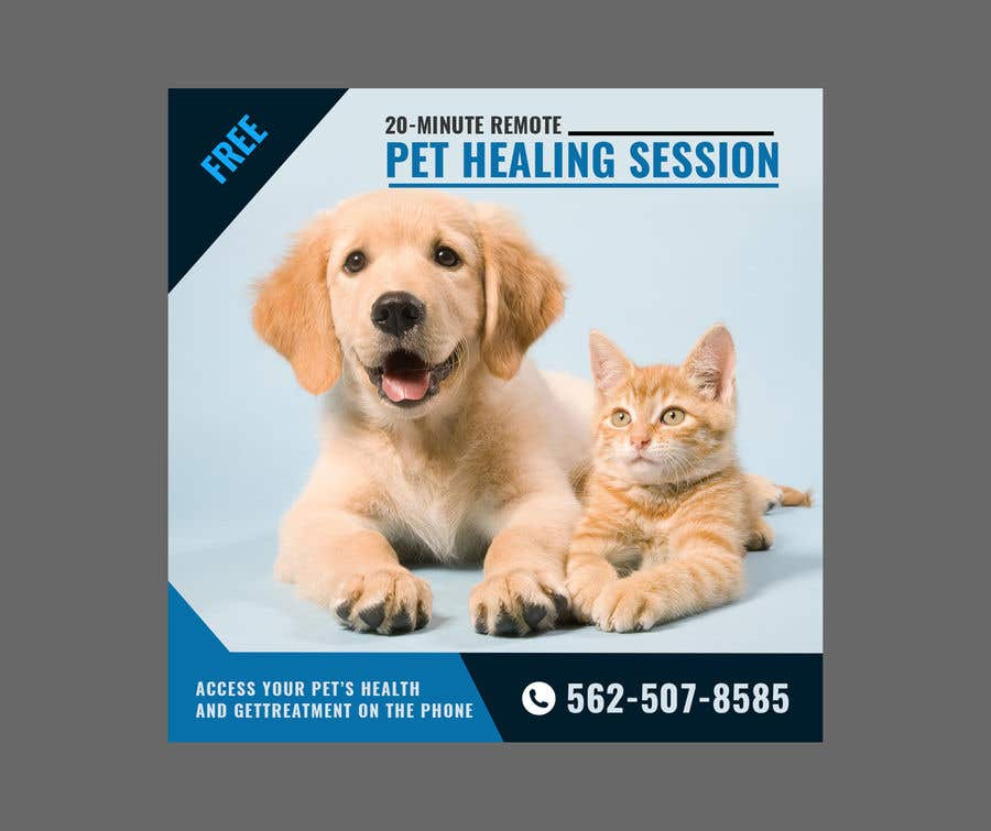 Contest Entry #                                        2                                      for                                         Need Pet Healer Ad Created for Craigslist