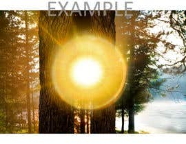 #77 for Advanced PhotoShop editing for an outdoor image with sun flare. by nazeemsylhet