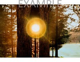 #84 for Advanced PhotoShop editing for an outdoor image with sun flare. by nazeemsylhet