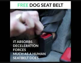 #21 for Creation of Promo video for dog seat belt by arshmanumar49