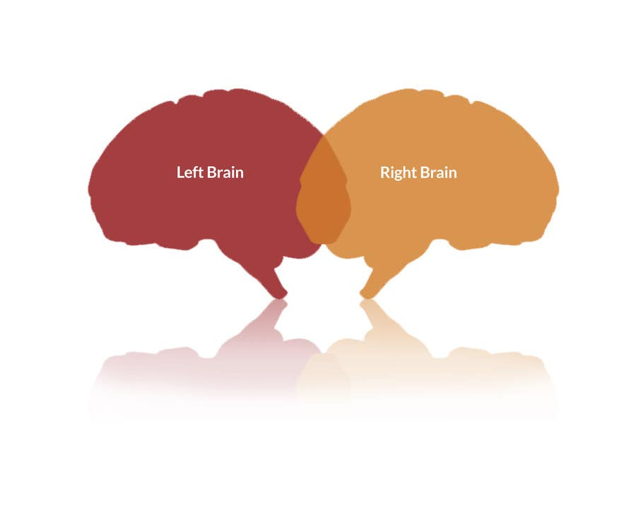 Proposition n°                                        1                                      du concours                                         Need 2 graphics for blog about Left Brain and Right Brain selling