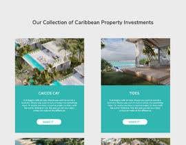 #90 cho Website and brochure for New Caribbean Island Development bởi biswasshuvankar2
