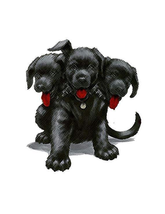 Kilpailutyö #                                        16                                      kilpailussa                                         cerberus puppy