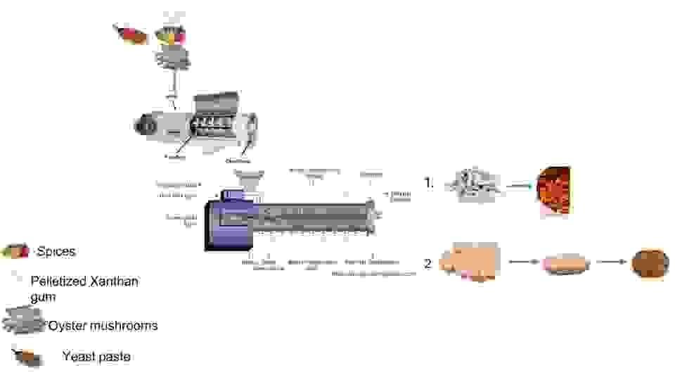 Penyertaan Peraduan #                                        14                                      untuk                                         Extrusion system video
