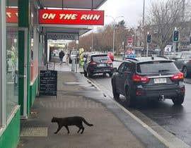 Nro 70 kilpailuun Photoshop Black Cat into an image. käyttäjältä MojtabaAzizi