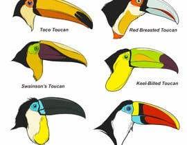 #45 untuk Sketches of Toucans oleh iwanbonano