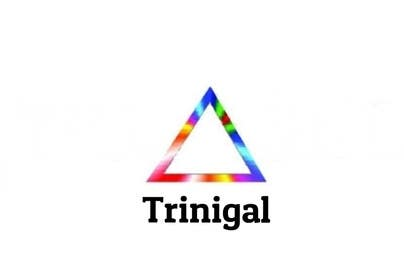 #58 untuk Design a Logo for a complex website oleh cristinandrei