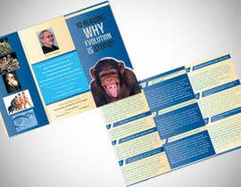 nº 27 pour Design a Brochure for a Science Promotion par viveksingh29