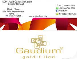 saif123568 tarafından Re design some Business Cards for me için no 3