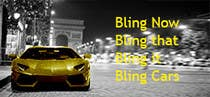Contest Entry #26 for Design a Banner for Palringo Limited