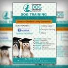 Graphic Design Entri Peraduan #13 for Dog Obedience Flyer Design
