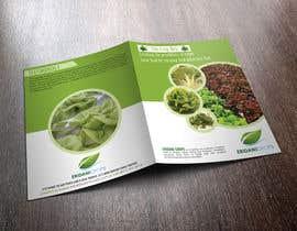 Nro 41 kilpailuun Design a Sales Brochure käyttäjältä stylishwork