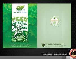 Nro 25 kilpailuun Design a Sales Brochure käyttäjältä KilaiRivera