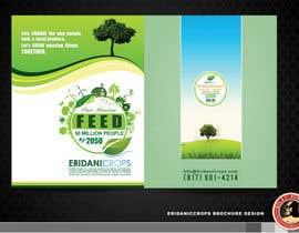 Nro 29 kilpailuun Design a Sales Brochure käyttäjältä KilaiRivera