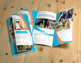 #6 para Brochure for Horse therapy company por sauravT