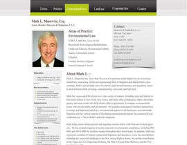 #45 dla Website Design for Manewitz & Studholme LLC przez madcganteng