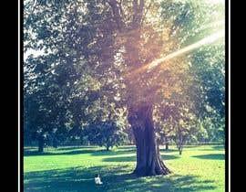 #11 untuk Big Tree Poster oleh kennsosa