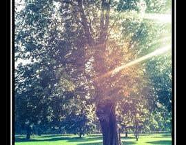 #13 untuk Big Tree Poster oleh kennsosa