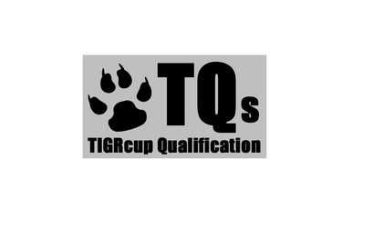 "#6 untuk Addon contest for a TIGRcub Logo for ""TQ"" or ""TQs"" oleh nikolsuchardova"