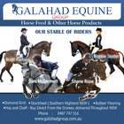 Graphic Design Inscrição do Concurso Nº18 para Graphic Design for Galahad Equine Group Pty Ltd