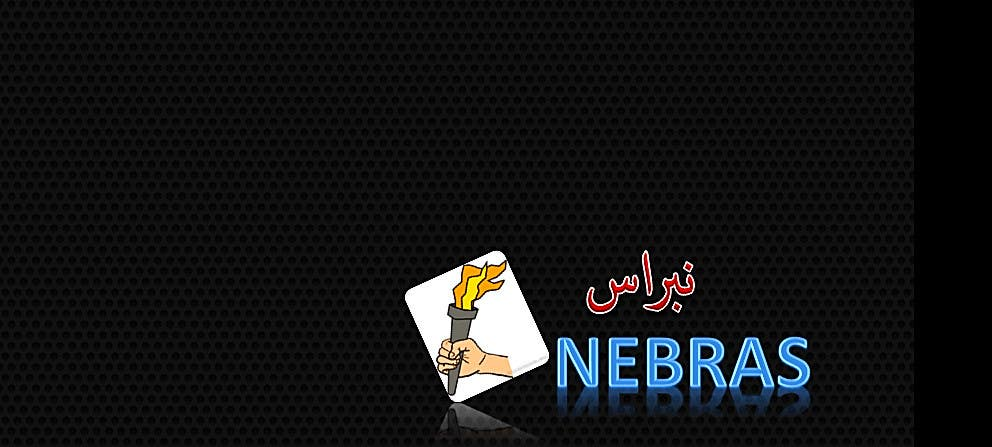 Kilpailutyö #                                        146                                      kilpailussa                                         Design a logo for company called Nebras