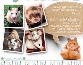 nº 34 pour Design a Flyer for a small animal rescue par RonRamores
