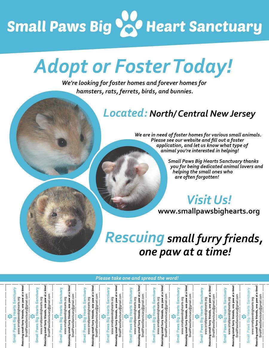 Bài tham dự cuộc thi #                                        31                                      cho                                         Design a Flyer for a small animal rescue