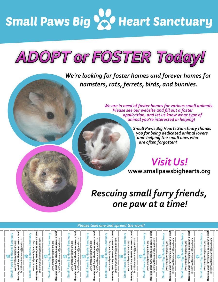 Bài tham dự cuộc thi #                                        43                                      cho                                         Design a Flyer for a small animal rescue