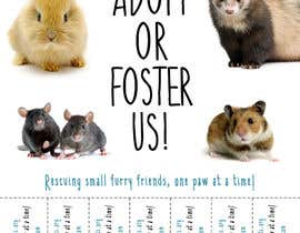 #44 for Design a Flyer for a small animal rescue af amylesko