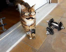 #37 for Freelancer.com #MOVEmber Challenge - Give Your Pet a Makeover (Photoshop Design Contest) by panosdimitrios